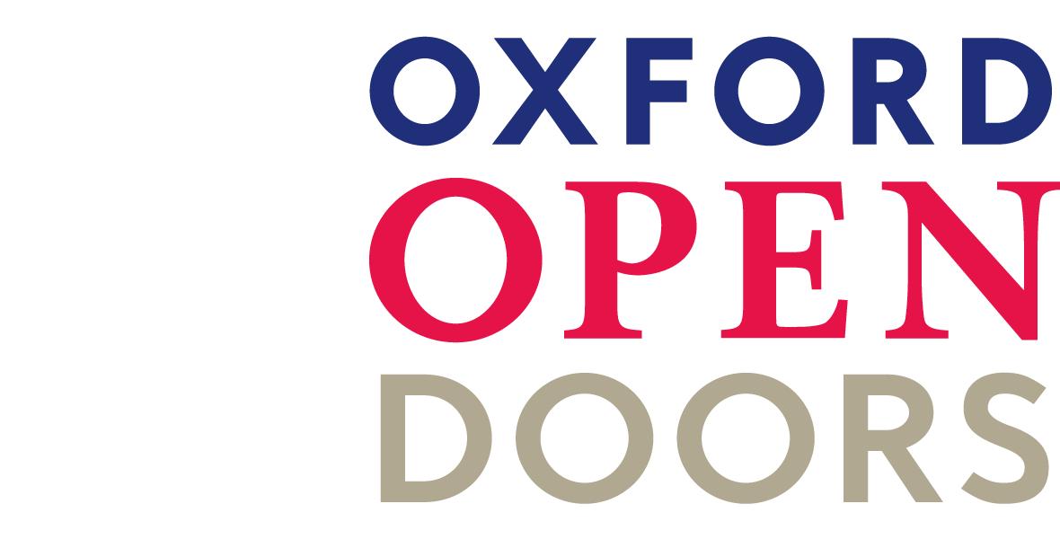 OPT-portfolio-ood-logo-design